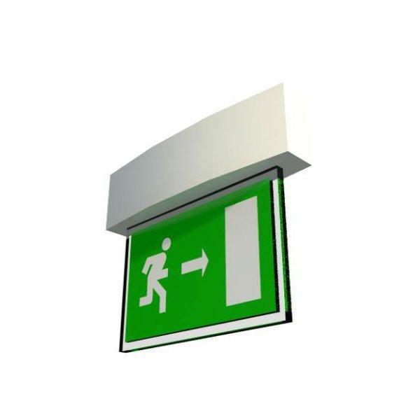 EXIT emergency signal