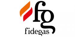 Logo Comercial de Aplicaciones Electrónicas, S.L. - Fidegas